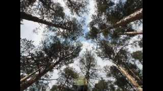 Мөлдір Әуелбекова - Туған жер