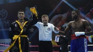 Бокс Astana Arlans vs Puerto Rico Hurricanes 5:0 Всемирная серия-2016 / Boxing Kazakhstan winner
