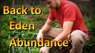 Back to Eden Garden the Good, the Bad, and the Ugly | No More Weed problems!