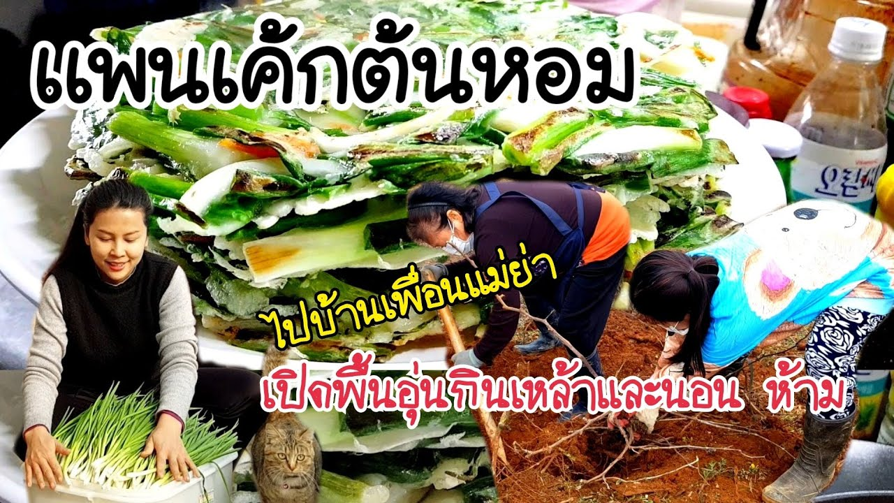 ทำเเพนเค้กต้นหอมหรือพิซซ่าเกาหลี EP.301 ไปบ้านเพื่อนเเม่ย่า อุทาหรณ์เตือนใจ ห้ามทำเด็ดขาด