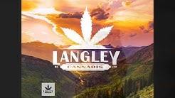 Langley BC Cannabis Strain Close Up--TheKushCrib--Quad Views-- #tkc #weed #strainview
