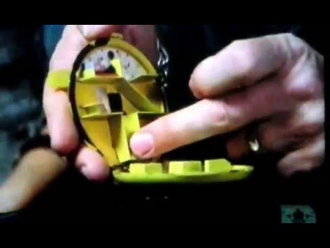 100 Greatest  Toys Polly Pocket creation and creator Kate wiggs chris wiggs