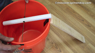 Teeter Totter Bucket Mouse Trap In Action with motion cameras - mousetrapmonday