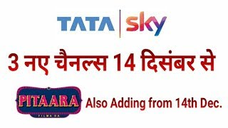 Tata Sky Launching Pitaara TV & 2 More New Channels from 14th Dec. (Watch Full Video for Details)