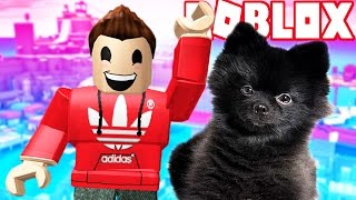 ESCAPE THE EVIL OBBY WITH MY PUPPY! (Roblox Adventures)
