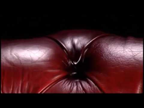 Average Sofa Commercial
