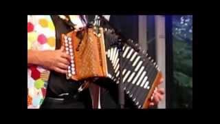 Festival accordéon à la Réunion