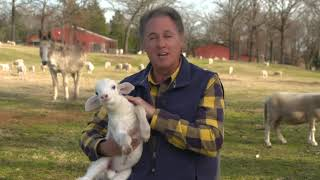 This is Carroll Roberson - From Conway Arkansas Ep 3
