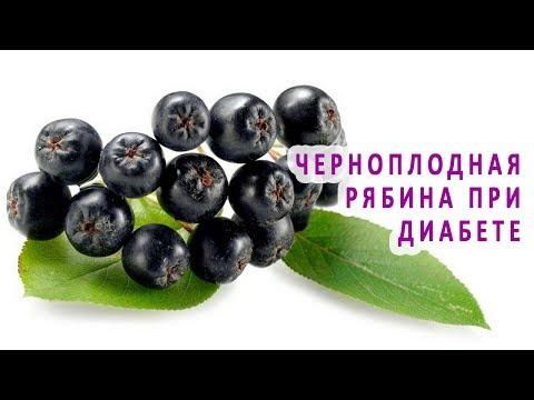 Черноплодная рябина при диабете