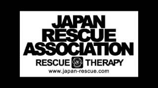 熊本地震支援(NPO法人日本レスキュー協会)