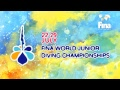 Diving Championships Kiev 2018, day 6