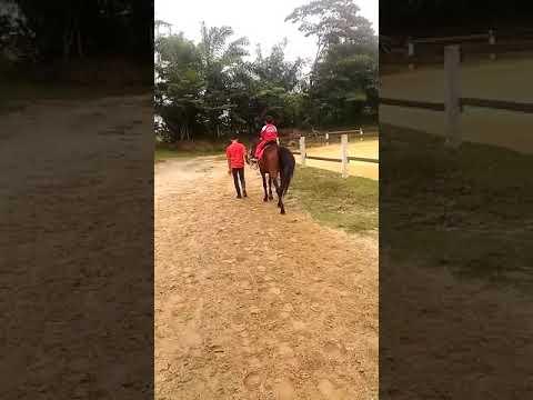 Taman Wisata Dakwah Okura Youtube