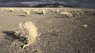 Gobi Desert Mongolia Expedition HD 1000MileJourneys