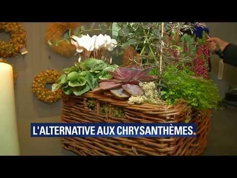 Olivier Fleuriste / BFM TV / Toussaint