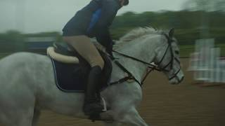 Training - How to jump a narrow cross country fence