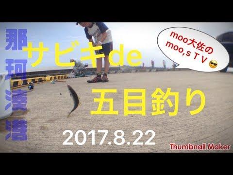 那珂湊港サビキ釣り2017.8.22再編集