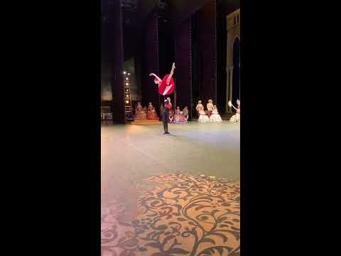 Ekaterina Krysanova And David Motta Soares In Don Quixote, Act III