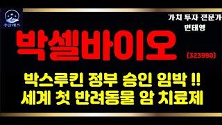 """박셀바이오 주가 전망 """"세계 첫 반려동물 암 치료제"""""""