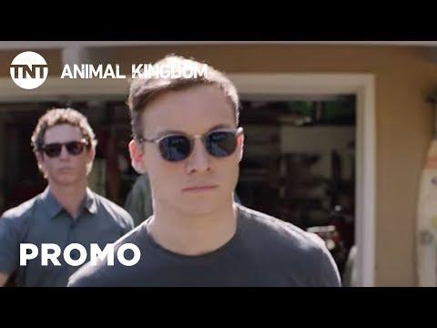 Animal Kingdom: He's My Brother  Season 3   TNT