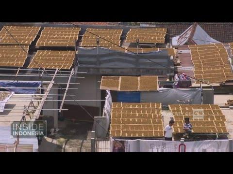 Inside Indonesia - Tembakau Srinthil di Lereng Sumbing