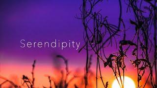 """宇井かおり """"Serendipity"""""""