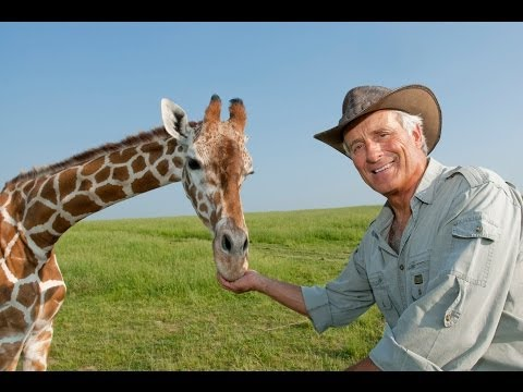 Jack Hanna Rips into COPENHAGEN ZOO for Killing Marius the GIRAFFE