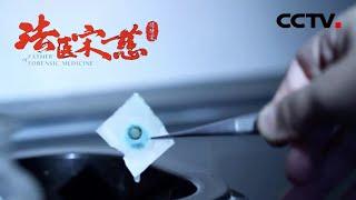 《法医宋慈》第五集 烧焦的尸体到底如何鉴别是被火烧死还是死后焚尸?【CCTV纪录】 - YouTube