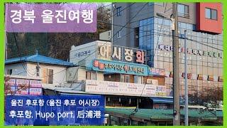 [경북 울진여행] 울진 후포항 (울진 후포 어시장) /…