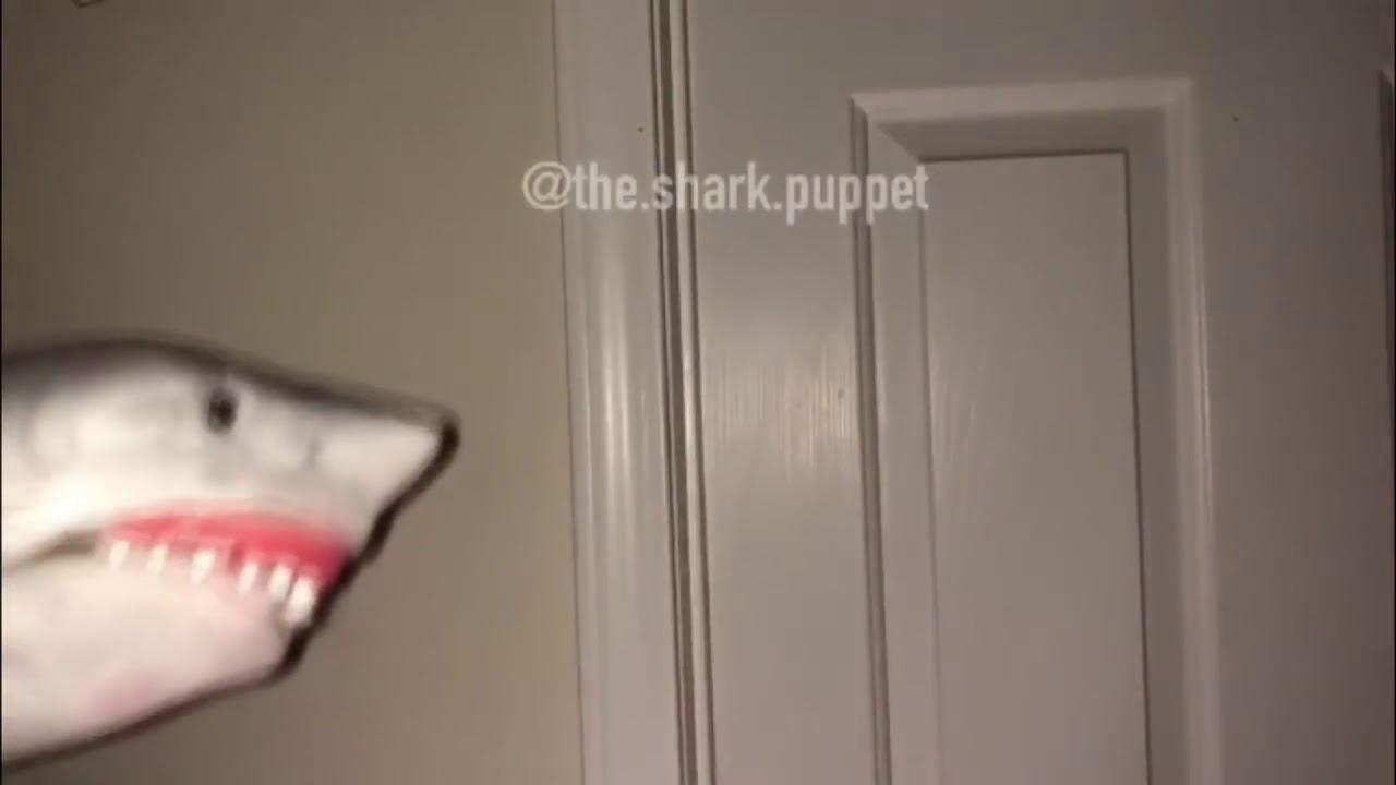 Download Shark Puppet Scream Compilation