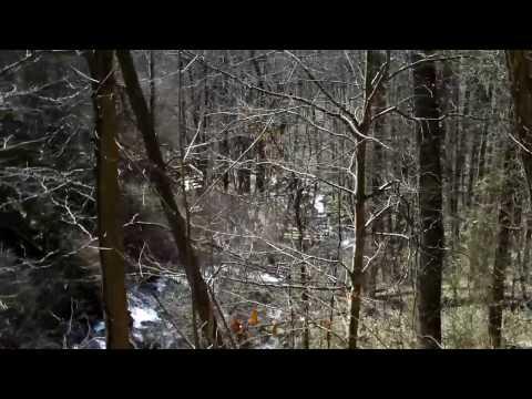 Amicalola Falls State Park Reviews Tips Amp Activities