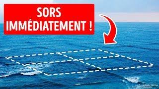 Si tu Nages Dans Une Mer Croisée, ta Vie Est en Danger !