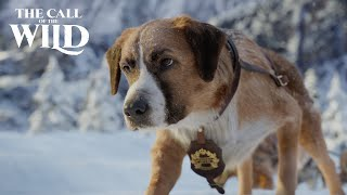 The Call of the Wild  New Lead Dog Clip