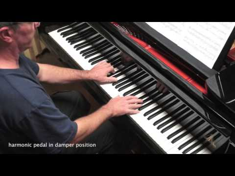 Gabriel Fauré - Pavane Op.50 - Piano Solo - P. Barton, FEURICH grand piano