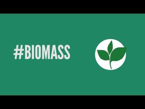 #BIOMASS (Pros - Cons)