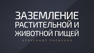 Заземление растительной и животной пищей Александр Палиенко