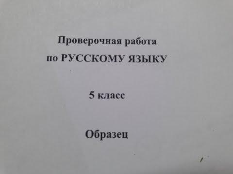 ВПР 5 класс Русский язык