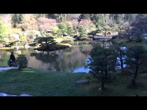 Japanese Garden, Seattle