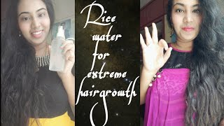 DIY Rice water for Extreme hair growth Double hairgrowth secret Natural Protein treatment