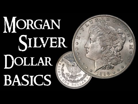 Morgan Silver Dollar Basics - Coin Collecting And Silver Stacking