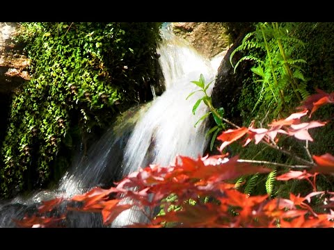 2 Hours Zen Garden Waterfalls- Relaxation, Meditation, Mindfulness, Healing, Spa