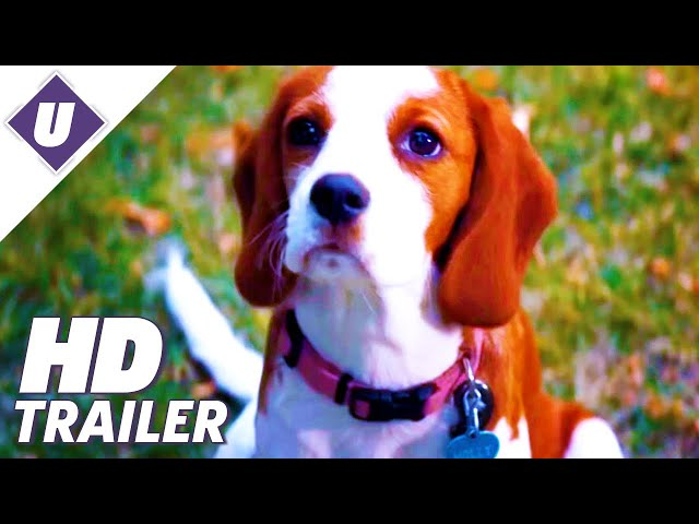 A Dogs Journey (2019) - Official Trailer | Dennis Quaid, Josh Gad