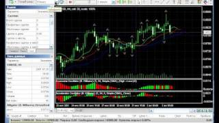 Forex Tester review by fxtrader.ru part 2