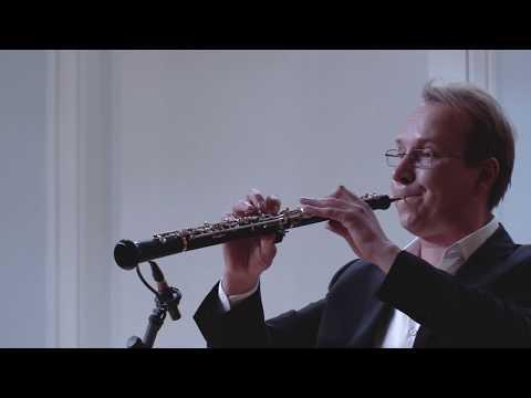 J.S. Bach - Concerto For Oboe And Violin In D Minor BWV 1060R