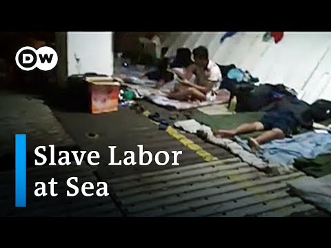 Is The Fishing Industy Tricking People Into Slave Labor? | DW News