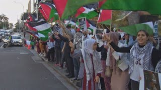 Kiwi Palestinians stage rallies across NZ protesting against Gaza violence
