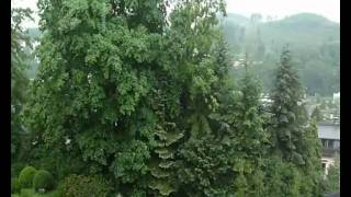 Raga Megha (Rain-Melody) Part 1