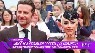 Lady Gaga y Bradley Cooper estarían conviviendo e Irina, la ex, ya habría encontrado consuelo Video