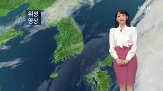 5시뉴스 강아랑기상캐스터 201010