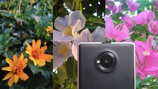 YU Yuphoria Camera Review!
