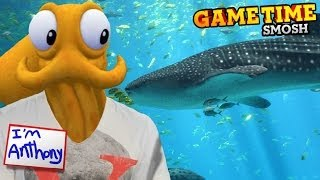 Octodad Goes To The Aquarium (gametime W/ Smosh)